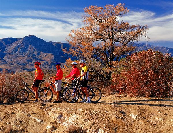 Palm Springs Mountain Bike Tours and Rentals